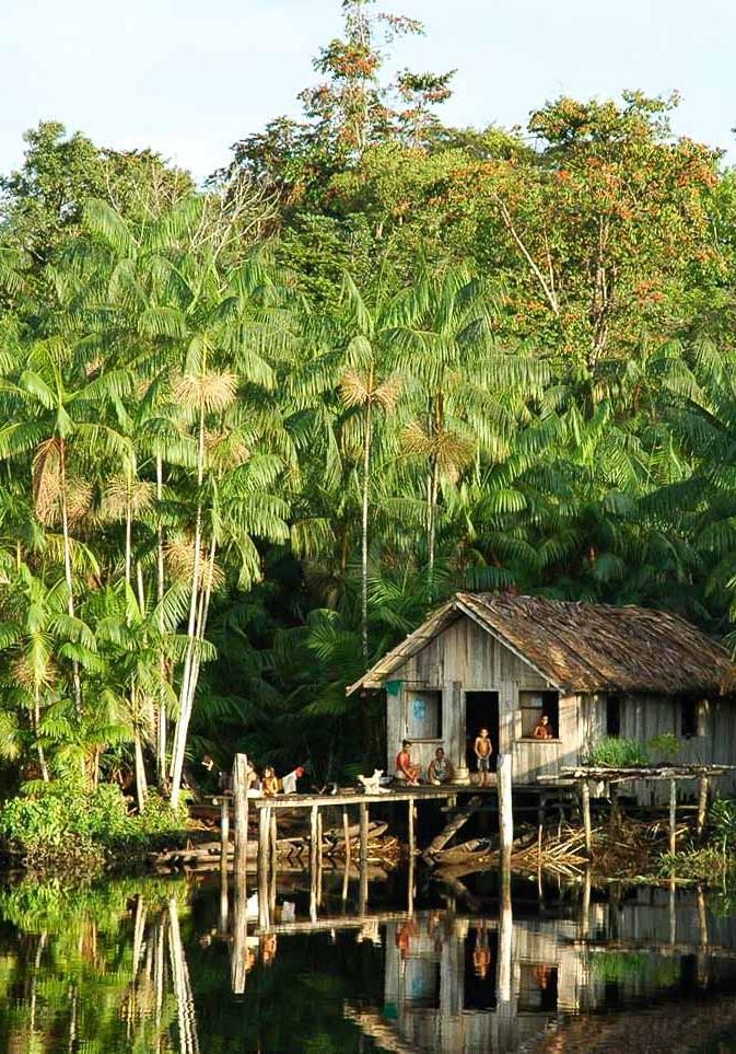 Foto Insel Marajo